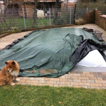 Ein von der Firma Rothschenk entwickeltes Poolposter für die Abdeckplane eines Pools. Im Vordergrund ist ein Hund zu sehen.